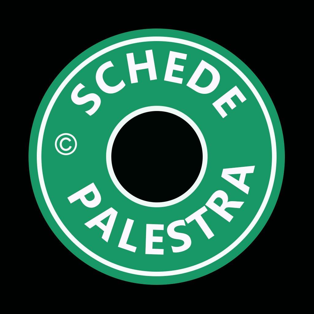 SCHEDE PALESTRA